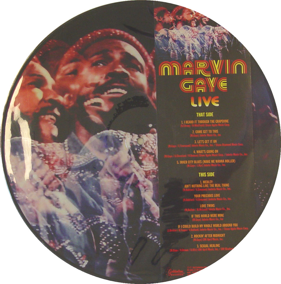 "Marvin Gaye Vinyl 12"" (New)"