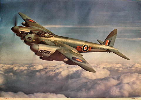 Mosquito B. XVI of No/ 571 Poster