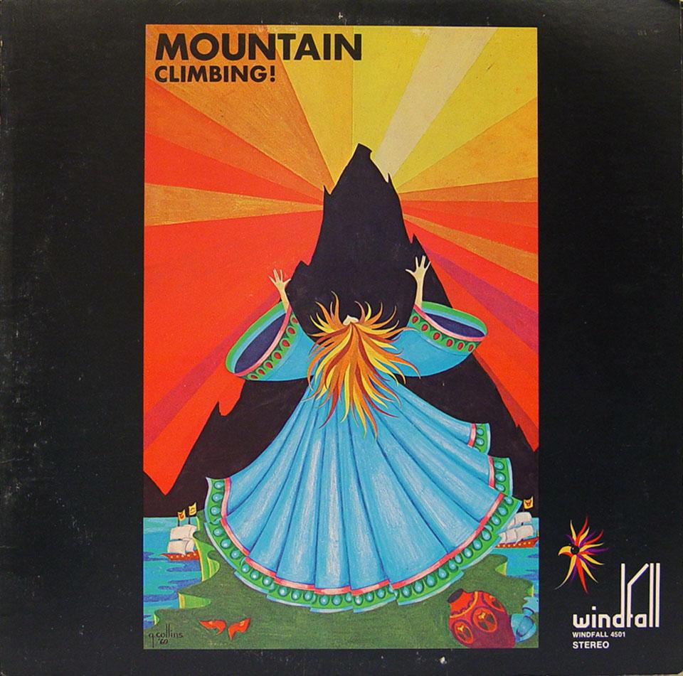 "Mountain Vinyl 12"" (Used)"