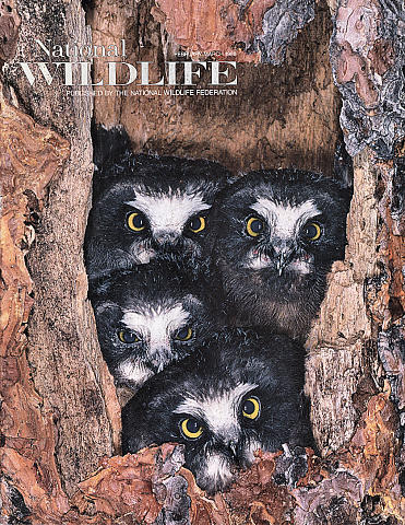 National Wildlife Vol. 26 No. 2 Magazine