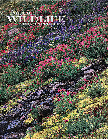 National Wildlife Vol. 28 No. 3 Magazine