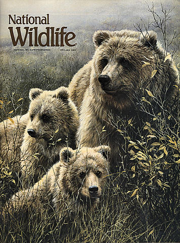 National Wildlife Vol. 33 No. 1 Magazine