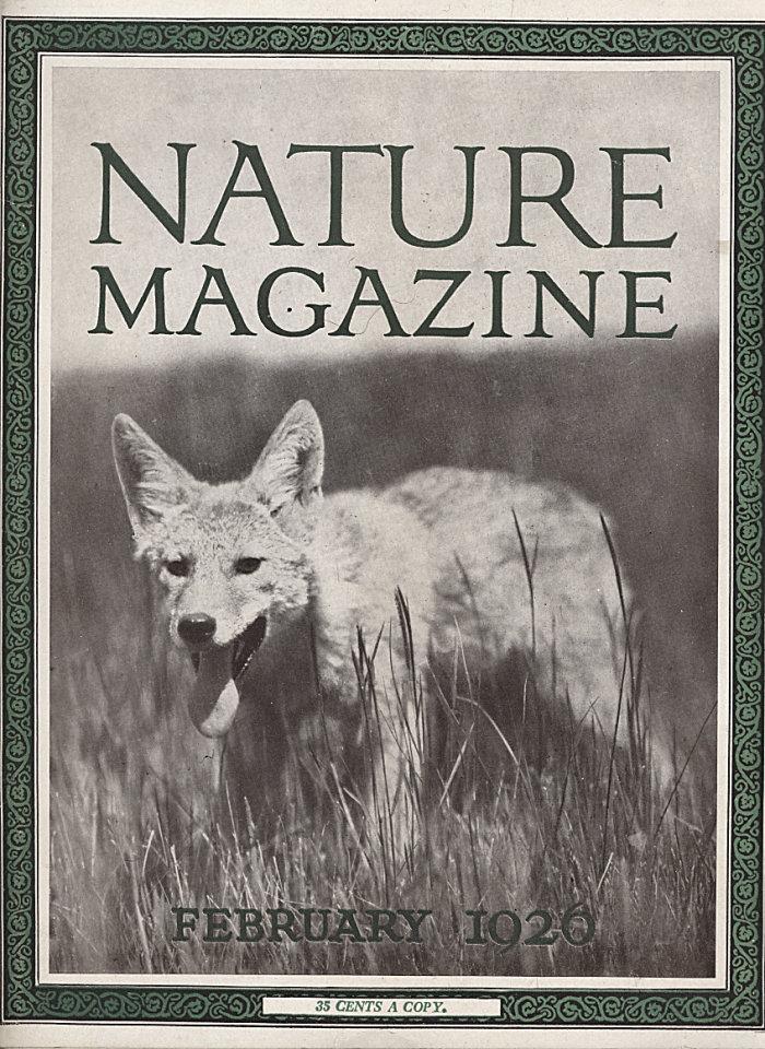 Nature Vol. VII No. 2