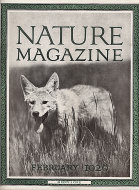Nature Vol. VII No. 2 Magazine