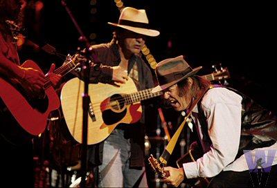 Neil Young & Crazy Horse Fine Art Print