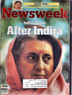 Newsweek Vol. CIV No. 20 Magazine