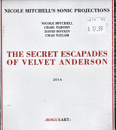 Nicole Mitchell's Sonic Projections CD