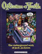 Optimism Of Youth Book