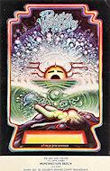Pacific Vibrations Handbill