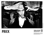 Prick Promo Print
