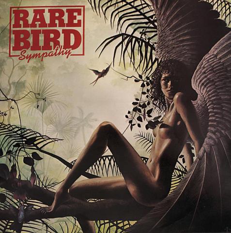 "Rare Bird Vinyl 12"" (Used)"