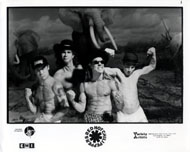 Red Hot Chili Peppers Promo Print