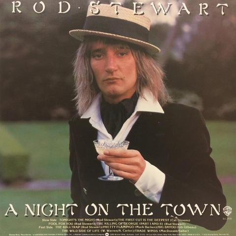 """Rod Stewart Vinyl 12"""" (New)"""