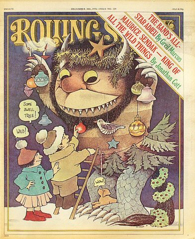 Rolling Stone Issue 229