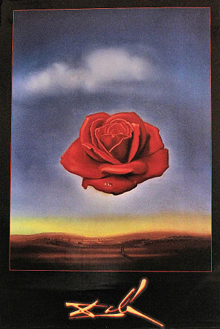 Rose Meditative Poster