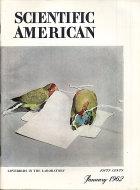 Scientific American Vol. 206 No. 1 Magazine