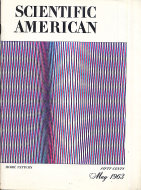 Scientific American Vol. 208 No. 5 Magazine