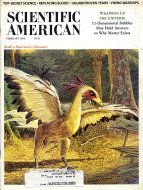 Scientific American Vol. 278 No. 2 Magazine