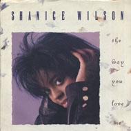 "Shanice Wilson Vinyl 7"" (Used)"