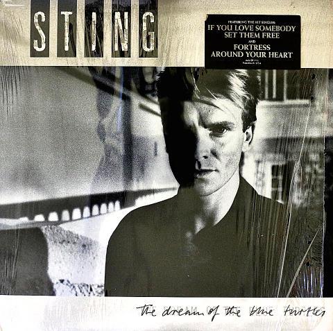 "Sting Vinyl 12"" (Used)"