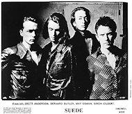 Suede Promo Print