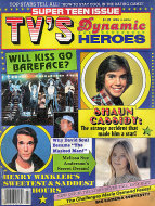 Super Teen TV's Dynamic Heroes Vol. 1 No. 4 Magazine