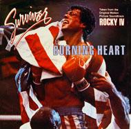 "Survivor Vinyl 7"" (Used)"