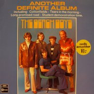 "The Beach Boys Vinyl 12"" (Used)"