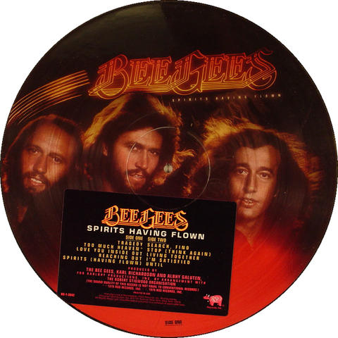 """The Bee Gees Vinyl 12"""" (New)"""