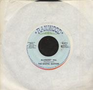 "The Exotic Guitars Vinyl 7"" (Used)"