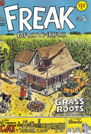 The Fabulous Furry Freak Brothers No. 5 Comic Book