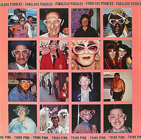 """The Fabulous Poodles Vinyl 12"""" (Used)"""