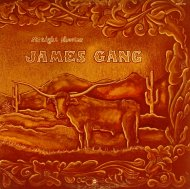 "The James Gang Vinyl 12"" (Used)"