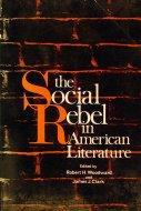 The Social Rebel In American Literature Book