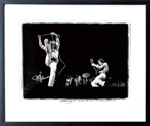 The Who Framed Fine Art Print