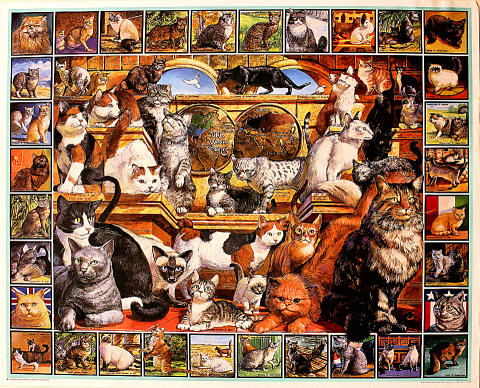 The World of Cats Poster