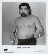 Tiger Chung Lee Promo Print