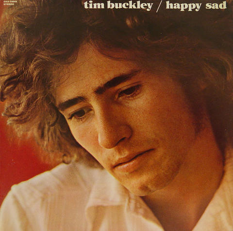"Tim Buckley Vinyl 12"" (Used)"