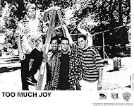 Too Much Joy Promo Print