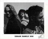 Urban Family Dog Promo Print