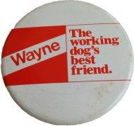 Wayne Pin