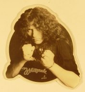 "Whitesnake Vinyl 7"" (New)"