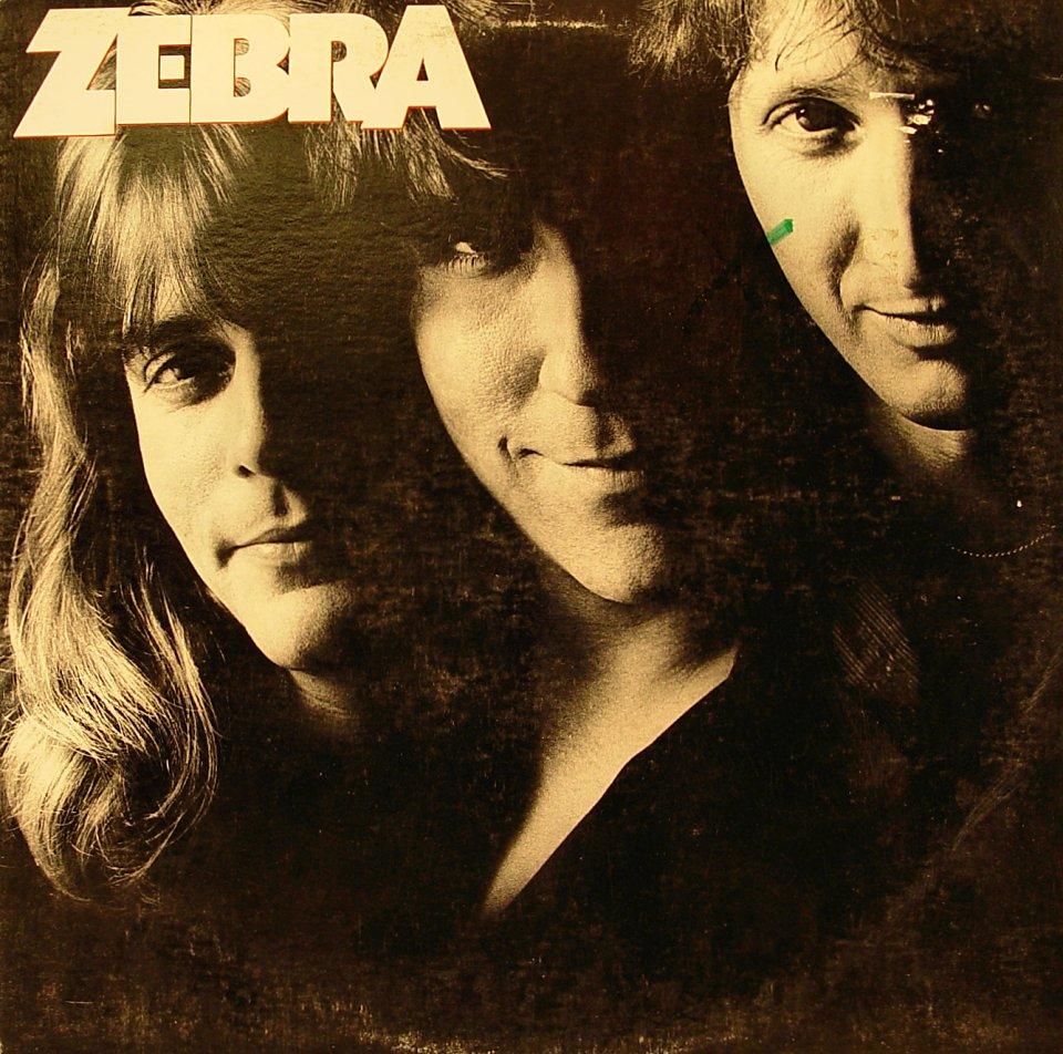 "Zebra Vinyl 12"" (Used)"